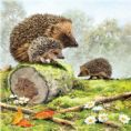 Hedgehog Family Square 1000 Piece Jigsaw